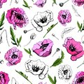 Hand drawn colored and graphic sketch with pink poppy flowers isolated on white background. Seamless pattern. Royalty Free Stock Photo