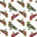 Hand drawn colorful birds seamless pattern in zentangle style. Crown ornamental silhouette. Hippie ornamental pattern