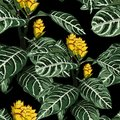 Hand drawn colorful tropical blooming exotic flowers, botanical floral and leaves seamless pattern. Royalty Free Stock Photo