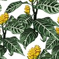 Hand drawn colorful tropical blooming exotic flowers, botanical floral and leaves seamless pattern.