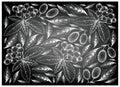 Hand Drawn Cornelian Cherries And Aronia Cherries On Chalkboard