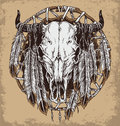 Hand drawn cow skull and feathers illustration. Royalty Free Stock Photo