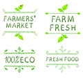 Hand drawn design elements. Farmer's market labels Royalty Free Stock Photo