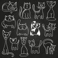 Hand drawn doodle cats set on blackboard