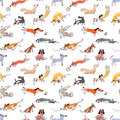 Hand drawn doodle cute dogs. Seamless pattern with plaing pets