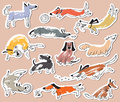 Hand drawn doodle cute dogs. Stickers set with plaing pets with