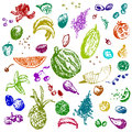 Hand drawn doodle food fruits and berries colored objects white seamless background design illustration for poster flyer eps Stock Images