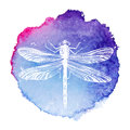 Hand drawn dragonfly on watercolor background Royalty Free Stock Photo