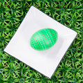 Hand drawn easter egg green with plate on on artificial green grass Royalty Free Stock Image