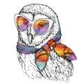 Hand Drawn Fashion Illustration of Barn Owl with sunglasses