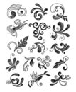 Hand drawn floral elements Royalty Free Stock Photography