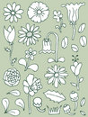 Hand drawn floral elements, set 1 Royalty Free Stock Photos
