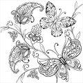 Hand drawn flowers and artistic butterflies for the anti stress coloring page. Royalty Free Stock Photo