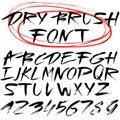 Hand drawn font. Brush stroke alphabet. Grunge style