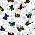 Hand drawn garden flower doodle with colorful rainbow butterflies