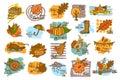 Hand drawn handwritten autumn fall thanksgiving cute cartoon labels greeting cards