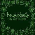 Hand drawn houseplant banner