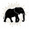 Hand drawn icon with textured elephant vector illustration