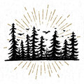 Hand drawn icon with a textured spruce trees vector illustration Royalty Free Stock Photo