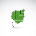 Hand-drawn illustration of simple birch tree leaf isolated. Royalty Free Stock Photo