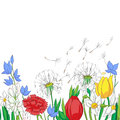 Hand drawn illustration of a spring garden colored drawing over a white card Royalty Free Stock Images