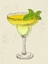 Hand drawn illustration of tropical cocktail yellow with mint Royalty Free Stock Photo