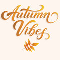 Hand drawn lettering - Autumn Vibes with autumn leaves. Elegant modern handwritten calligraphy. Vector Ink illustration