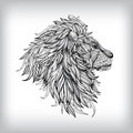 Hand Drawn Lion Illustration Royalty Free Stock Photo