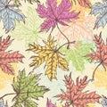 Hand drawn maple foliage seamless pattern Royalty Free Stock Photo