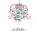 Hand drawn mistletoe