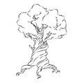 Hand Drawn Old Tree.  Symbol on White Background. Vector Royalty Free Stock Photo