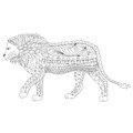 Hand drawn ornamental outline lion body and head