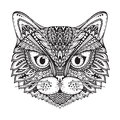Hand drawn ornate doodle graphic black and white cat face Royalty Free Stock Photo