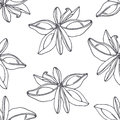 Hand drawn outline seamless pattern with anise. Black and white food background