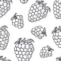 Hand drawn outline seamless pattern with blackberry. Black and white food background
