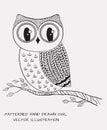 Hand drawn owl. Vector illustration.