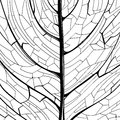 Hand drawn pattern of the leaf structure Royalty Free Stock Photo