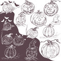 Hand drawn pumpkins vector illustration of different Stock Photography