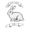Hand drawn rabbit vector illustration. Royalty Free Stock Photo