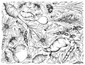 Hand Drawn of Root and Tuberous Vegetables Background Royalty Free Stock Photo
