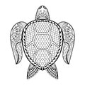 Hand drawn sea Turtle for adult coloring pages in doodle, zentan Royalty Free Stock Photo