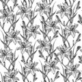 stock image of  Hand drawn seamless pattern with lily flowers