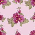 Hand drawn seamless pattern with mallow flowers gentle hollyhock and leaves Stock Images
