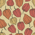 Hand drawn seamless pattern of physalis doodle in vector Royalty Free Stock Image