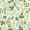Hand drawn seamless pattern - salad greens and leaves isolated on white background in trendy organic style. Vector illustration.