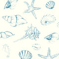 Hand drawn seashells illustration of isolated Stock Images
