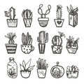 Hand drawn Set of Cactus in the pots. Royalty Free Stock Photo