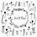 Hand Drawn Set Of Flora.