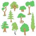 Hand Drawn Set of Trees. Doodle Drawings of Green Fir, Cypress, Birch, Oak in Flat Style
