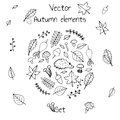 Hand drawn set of vector autumn elements. Includes foliage, berries, mushrooms and a hedgehog.